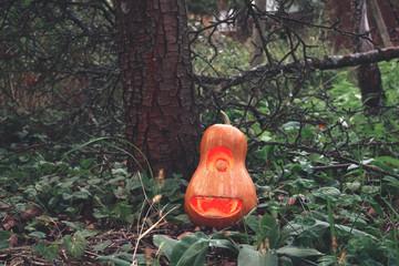 Halloween pumpkin minion in the woods on the grass near the tree