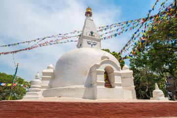 The stupa in Nepalese style located in Kathmandu, Nepal.