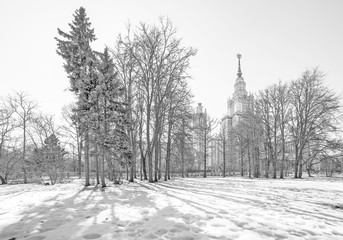 Wide angle monochrome view of molten snow in the park of spring sunny campus of Moscow University