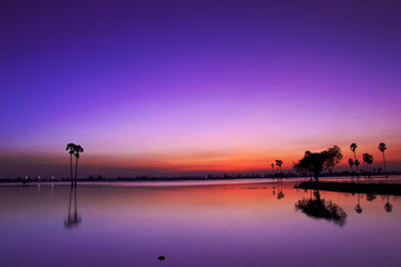 Fond de hotte en verre imprimé Prune Silhouette twilight sunset sky reflect on the water with palm tree landscape