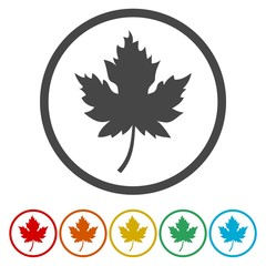 Vector Canadian maple leaf roundel icon