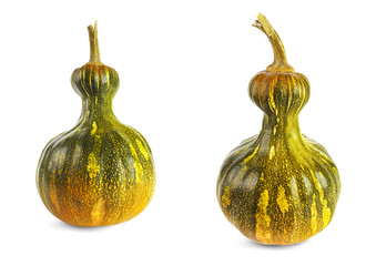 two pumpkins green and yellow color on a white background