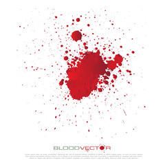 Blood splatter isolated on white background, vector design