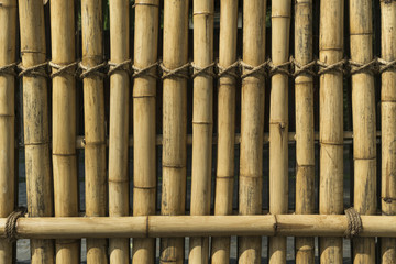 Bamboo fence tied with rope, Bangkok, Thailand
