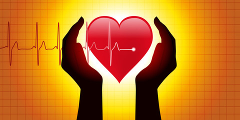 Coeur - pulsation - mains