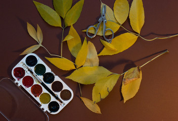 watercolor paints, scissors , yellow leaves on a brown background