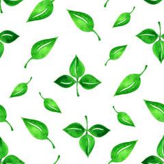 beautiful botanical seamless pattern - watercolor hand drawn