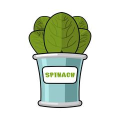 Spinach seamless pattern. Fresh green ornament. Green lettuce te