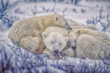 Polar bear and cubs,photo art
