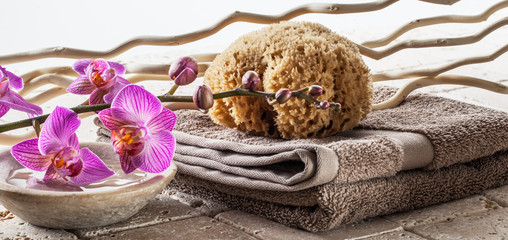 washing up concept with natural sponge, cotton towel, drift wood