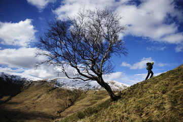 A hiker climbing a steep slope with a mountain landscape in the background at  The Loch Lomond & The Trossachs National Park, Scotland, UK.