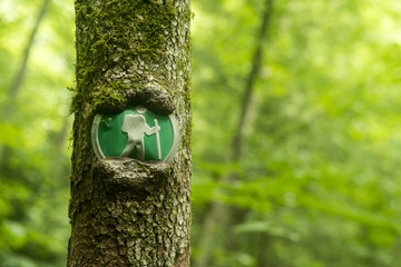 Trail marker in Virgin Falls State Natural Area, Sparta, Tennessee.