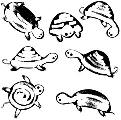 Funky vector turtles icon set