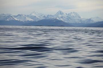 View of Cordillera Darwin and Beagle channel.