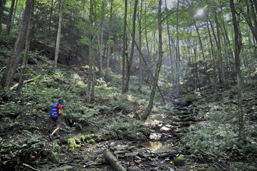Backpacking West Rim Trail Pennsylvania