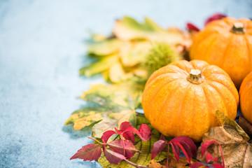 Colorful fall seasonal autumn colors background