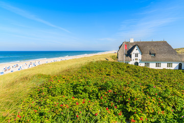 Fototapete - Typical Frisian house with straw roof on cliff at Kampen beach, Sylt island, Germany