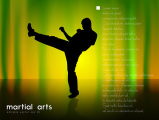 Vector of karate
