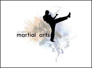 Vector of karate