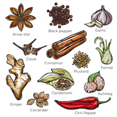 Indian Spices Herbs Icon Set