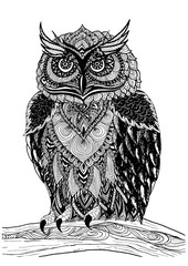 Vector hand drawn Owl sitting on branch. Black and white zentang