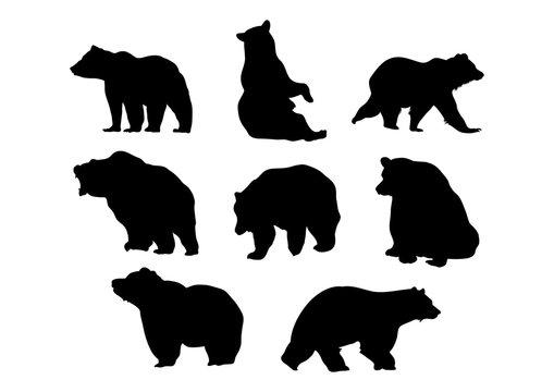 Bear - Silhouette Bear Premium Pack