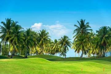 Landscape of golf course