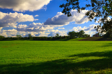 Beautiful green meadow in the afternoon sun.
