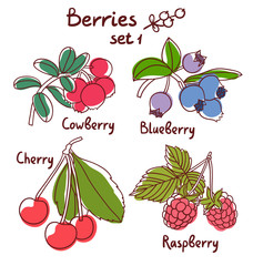 Raspberry, blueberry, cherry and cowberry berries set 1