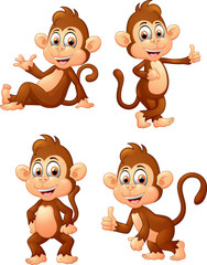 Set of monkey expressions