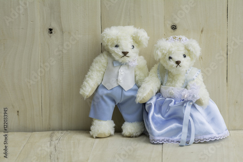 Couple Teddy Bears in a wedding dress standing on the wooden