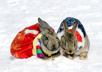 토끼 부부의 새해인사
