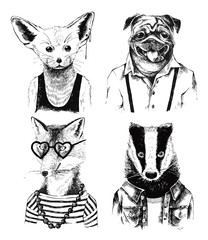 Fototapete - Hand drawn dressed up badger in hipster style