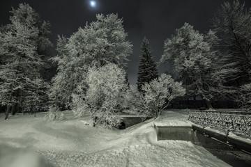 Snowy winter park