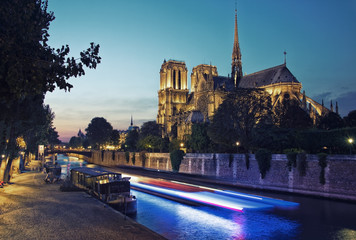 Fototapete - Light trail in front of the cathedral Notre-Dame in Paris
