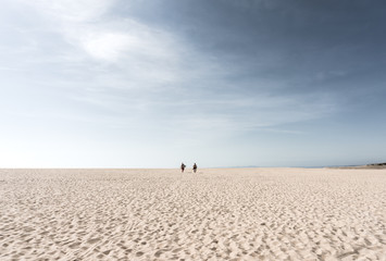 Distant View Of People Walking Against Sky On Beach