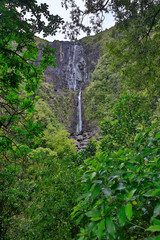 Wairere Falls waterfall and surrounding forest in Wairere Falls Scenic Reserve, New Zealand. View of waterfall from viewing platform showing area below waterfall.