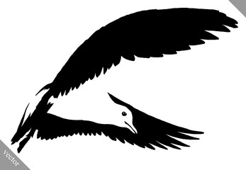 black and white paint draw Seagull bird vector illustration