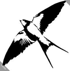 black and white paint draw swallow bird vector illustration