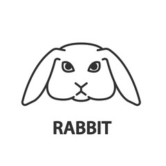 rabbit, linear illustration. rabbit with drooping ears, icon thin line design