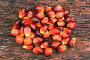 Oil plam seed.
