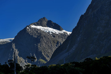 Scenic lookout of Hollyford Valley at Monkey Creek on Milford Road to Milford Sound, New Zealand