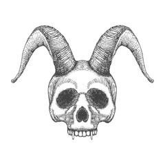 Skull with horns. Human skull with goat horns. Demon Head. A demon,  supernatural, malevolent. Witchcraft, occultism, mythology and folklore, religion attribute. Horned human skull t shirt print.