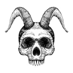 Grunge style art of human skull with goat horns. Print design. Demon Head. A demon,  supernatural, malevolent. Witchcraft, black magic, occultism, mythology and folklore, religion attribute. Vector.