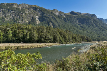 Mackay Creek, Fiordland National Park, northern Fiordland, overlooking the Eglinton Valley, on Milford Road, South island of New Zealand