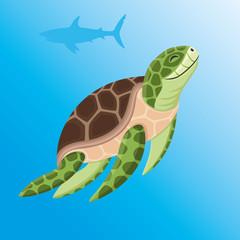 Sea turtle and shark.