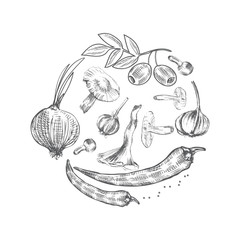 Hand drawn sketch vegetables, Vector illustration mushrooms, olive, pepper, onion isolated on white, Ideal for use in organic food industry, healthy green food market, vegetarian restaurant menu