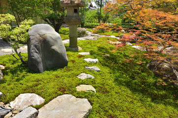 Moss-covered Japanese garden in Kyoto Japan