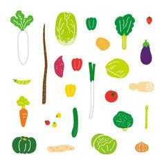 野菜 スクエアタイプ