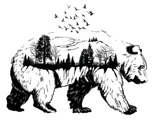 Double exposure, Hand drawn bear